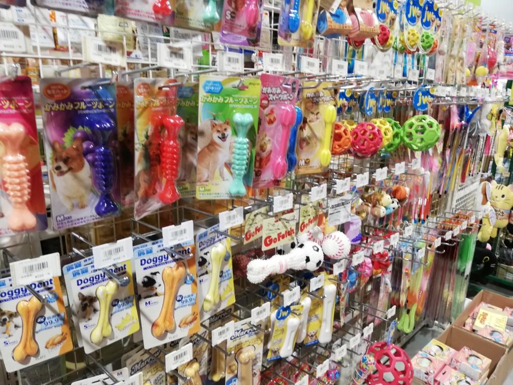 犬のロープのおもちゃを食べてしまう事の危険性