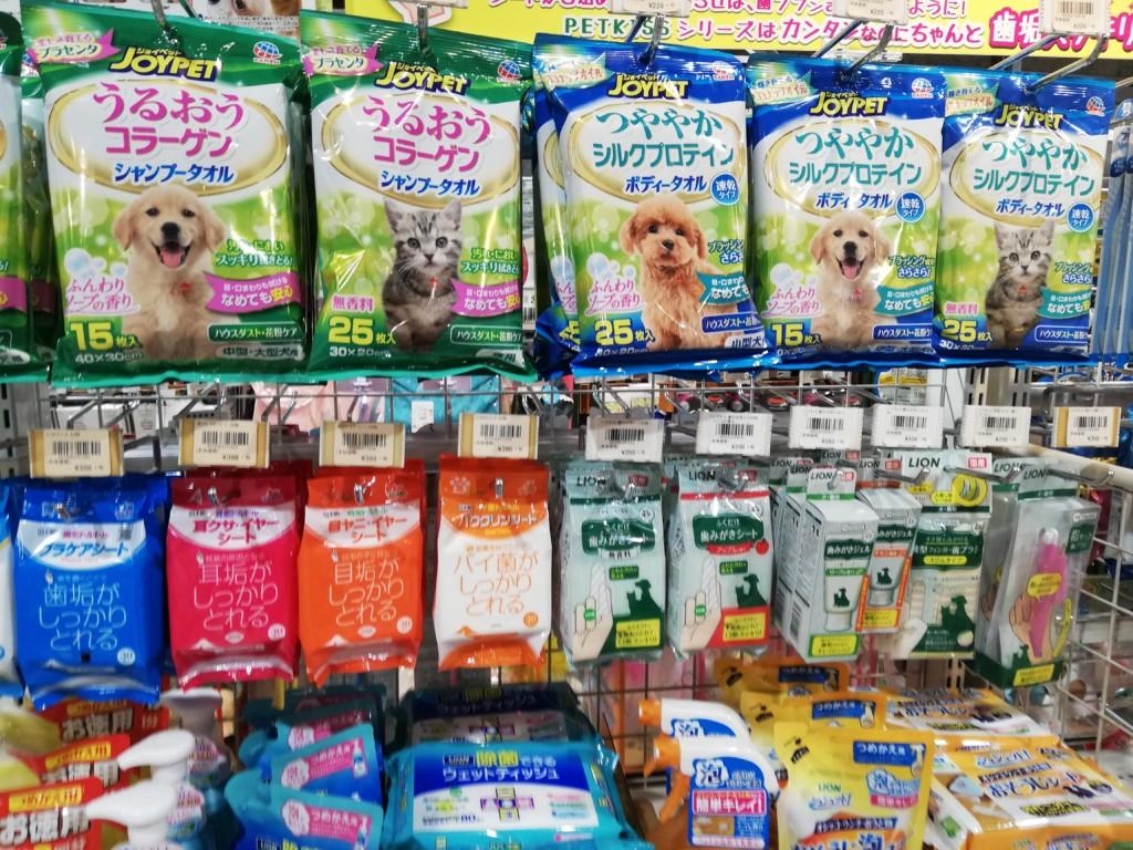 雨の日の犬のお散歩後の犬種ごとのケア方法と注意点